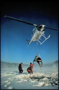 1985 Moose Lift Photo Courtesy of DNR - David Kenyon