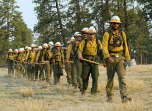 U.S. Forest Service Photo