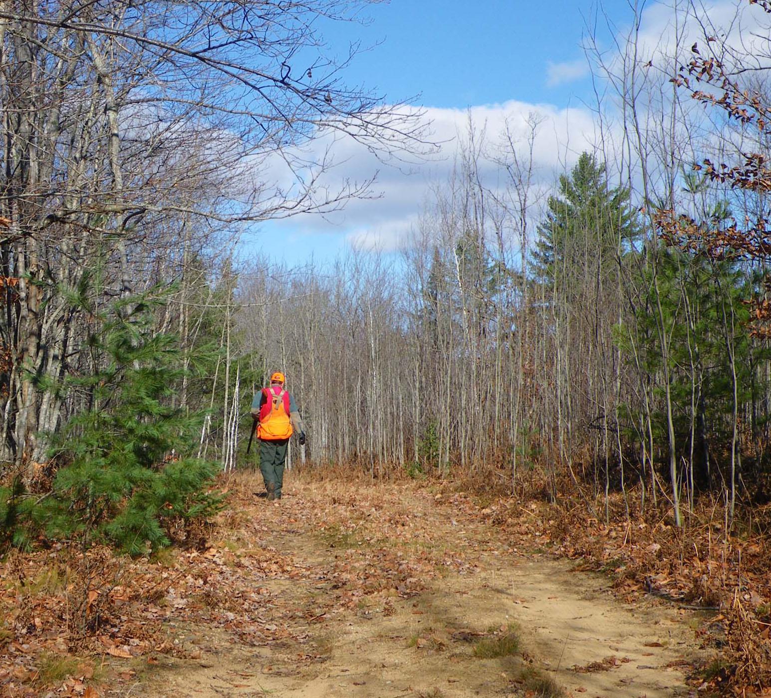 Michigan Department Of Natural Resources Hunting