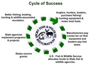 Cycle_of_success_Poster