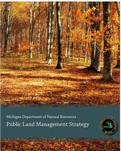dnr-public-land-strategic-plan